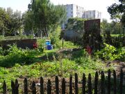 jardin-pied-immeuble-diagonal